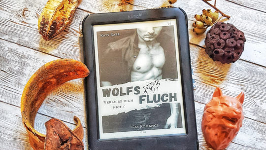 *Rezension* Wolfsfluch – Verliere dich nicht von Katy Raze